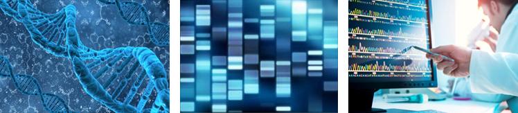 Biology & DNA